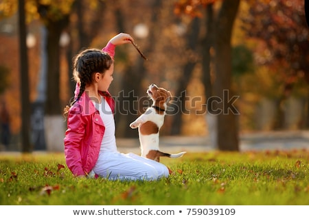 little girl playing with dog stock photo © goce