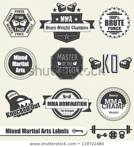 mixte · arts · martiaux · icône · emblème · bleu · boxe - photo stock © Porteador