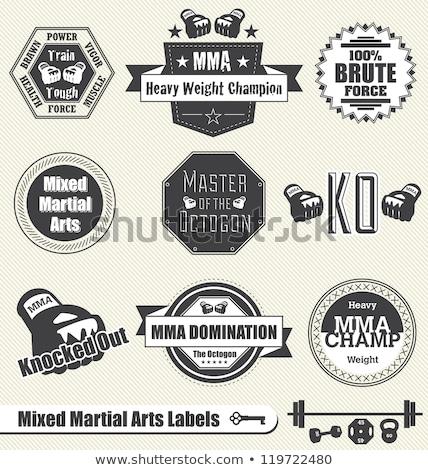 mixed martial arts icon or emblem Stock photo © Porteador