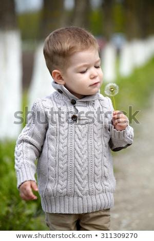 2 years old Baby boy with dandelion Stock photo © vladacanon