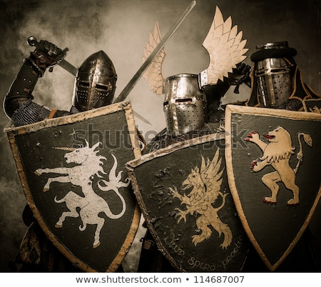 Company of medieval knights in armour  Stock photo © Nejron
