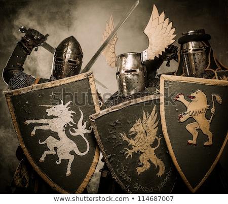 Cég középkori páncél férfi barátok háború Stock fotó © Nejron