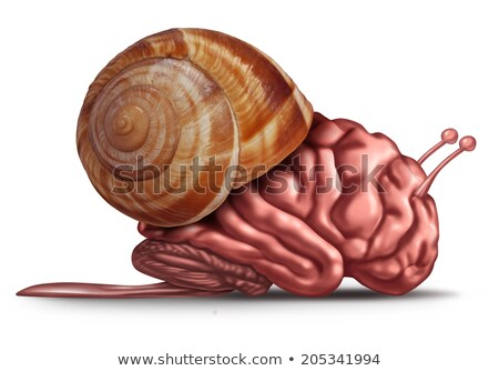 Pensare rallentare cervello funzione problemi umani Foto d'archivio © Lightsource