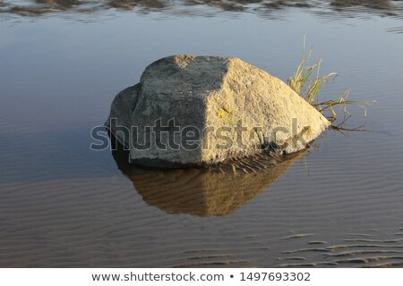 Shore of the sea, rocks and flowing water - white background Stock photo © Taiga