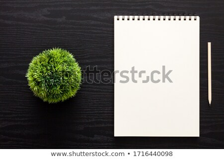 Simply notepaper on working wooden table  Stock photo © nalinratphi