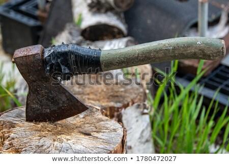 velho · isolado · branco · madeira · trabalhar · metal - foto stock © cherezoff