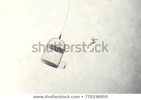 Bird in the cage Stock photo © Yongkiet