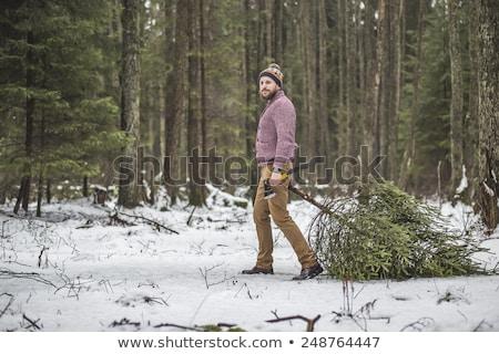 若い男 クリスマスツリー 木材 木こり あごひげ スプルース ストックフォト © Kor