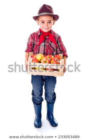 Little agriculturist boy holding apples in crate Stock photo © erierika