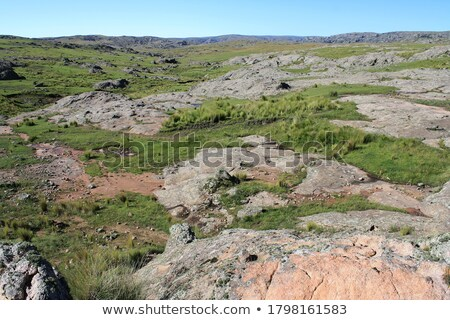Rocky pastureland Stock photo © olandsfokus