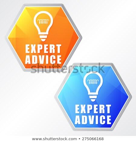expert advice and bulb symbols, two colors hexagons web icons Stock photo © marinini