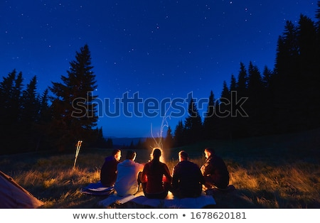 Tourist tent in the night sky Stock photo © All32