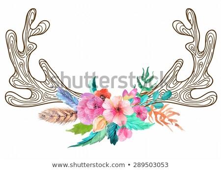 Сток-фото: болван · бык · череп · акварель · цветы