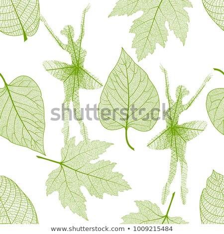 Dancing leaves seamless Stock photo © sahua