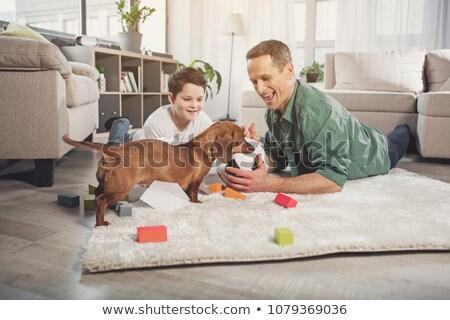 Foto stock: Família · cão · jogar · bola · sala · de · estar · terrier