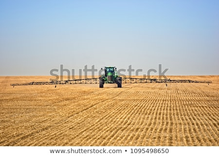 Flax and canola crops in Saskatchewan Stock photo © pictureguy