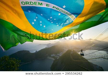 Zászló Rio sziluett üzlet fa terv Stock fotó © ojal