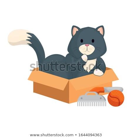Cute mały kotek charakter Zdjęcia stock © Loud-Mango