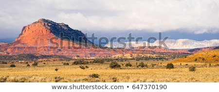 Storm Brewing Sun Hits Red Rock Walls Grand Staircase-Escalante  Stock photo © cboswell