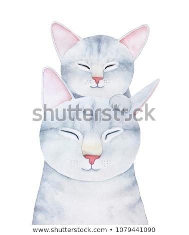 Dos gris gatos cara feliz ilustración naturaleza Foto stock © bluering