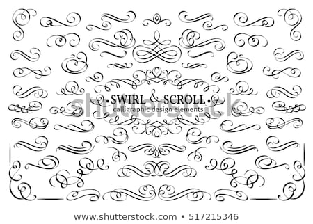 Vintage flourish swirls collection, vector flourishes  Stock photo © Andrei_