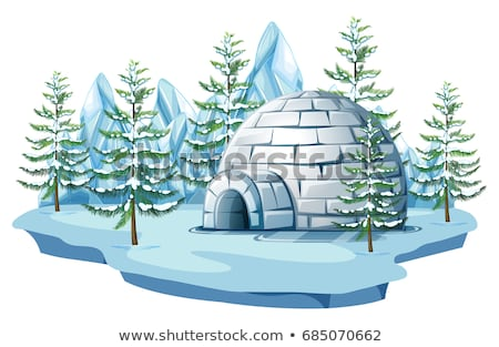 Igloo at the arctic land Stock photo © bluering