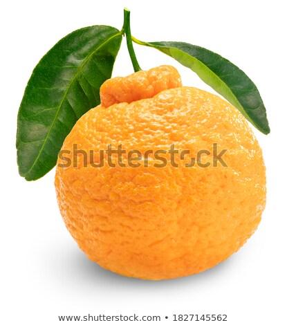 Todo mandarina rebanadas maduro pelado tazón Foto stock © Digifoodstock