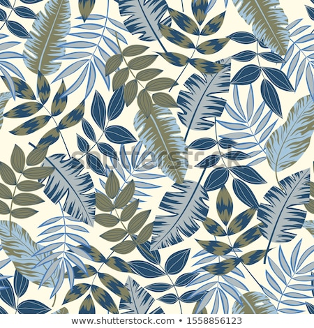 Monstera gray seamless pattern. Tropical leaves background. Palm Stock photo © MaryValery