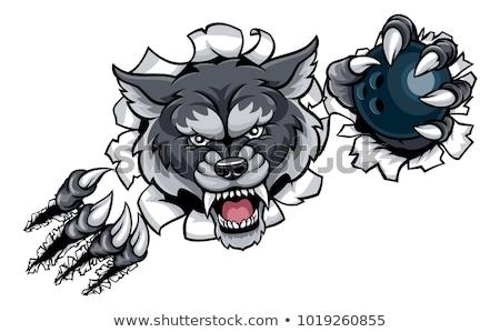 Сток-фото: Wolf Bowling Mascot Breaking Background