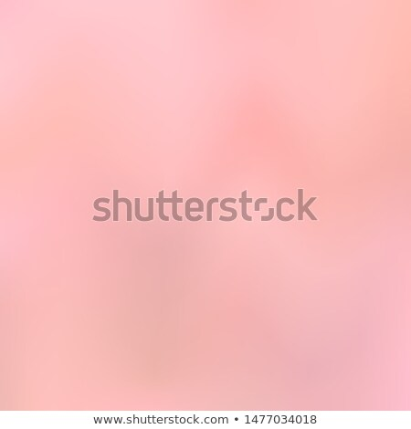 rose background with space for text vector illustration of flow stock photo © popaukropa