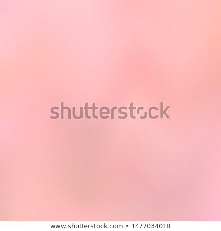 Stok fotoğraf: Gül · uzay · metin · çiçekler · çiçek