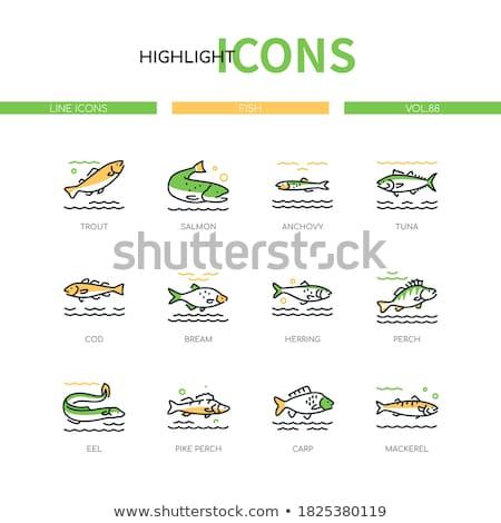 Ilustración atún lineal estilo icono agua Foto stock © Olena