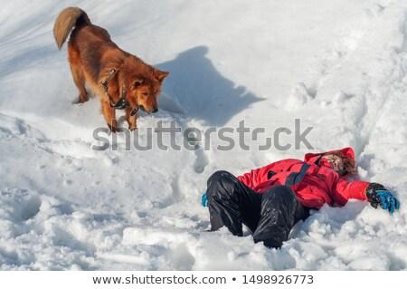 Lifeguard assisting unconscious boy Stock photo © wavebreak_media