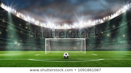 Verde fútbol objetivo aislado blanco campeonato Foto stock © Oakozhan