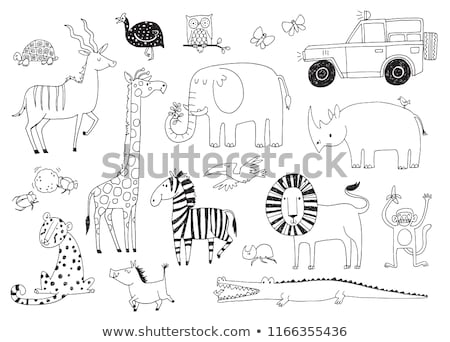 Jeep hand drawn outline doodle icon. Stock photo © RAStudio