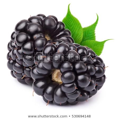 Blackberry isolated on white background stock photo © ungpaoman
