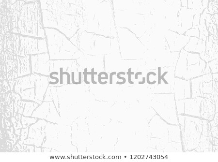 Vector marble texture with cracked white paint. Scratches. Subtle light grey background. Abstract Stock photo © Iaroslava
