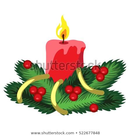 visco · teste · padrão · do · natal · tradicional · planta · vermelho - foto stock © lady-luck