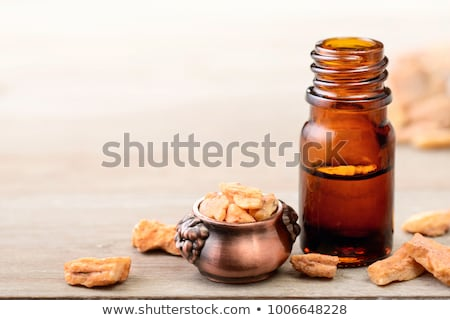 A bottle of styrax benzoin essential oil with benzoin resin stock photo © madeleine_steinbach