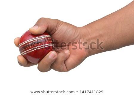 Hand Holding Cricket Ball Stock photo © Krisdog