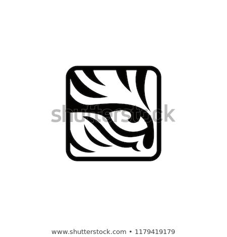 tiger vector logo icon symbol Stock photo © blaskorizov