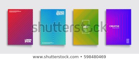 Minimális vonalak könyvborító sablon szett üzlet Stock fotó © SArts