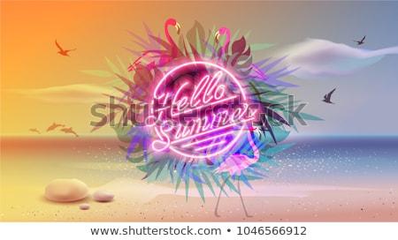 Olá verão néon bandeira projeto férias Foto stock © Anna_leni