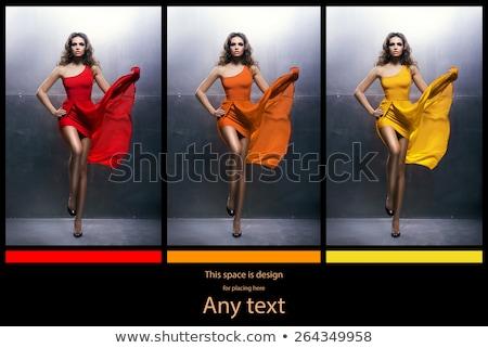 セット 異なる 女性 女性 背景 ストックフォト © bluering