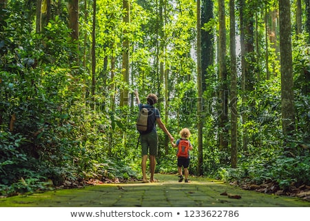 Dad and son travelers discovering Ubud forest in Monkey forest,  Stock photo © galitskaya