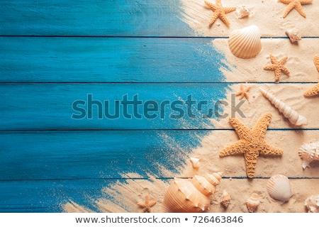 tenger · lény · keret · sablon · illusztráció · tengerpart - stock fotó © bluering