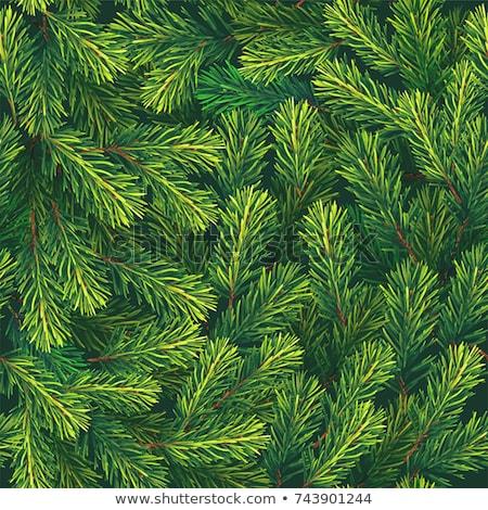 Végtelen minta örökzöld növények vízfesték virágmintás kézzel rajzolt Stock fotó © Artspace