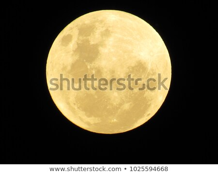 super full moon with yellow gold color on a black background Stock photo © galitskaya