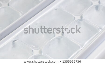Ice tray with ice and melting ice cubes on white background Stock photo © bluering
