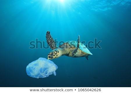 Su kirlenme plastik çanta okyanus örnek Stok fotoğraf © bluering